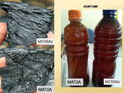 Transferring technology on the integrated wood charcoal and wood vinegar manufacturing at Simei