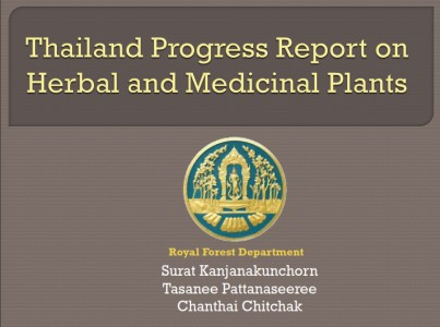 Thailand Progress Report on HMP